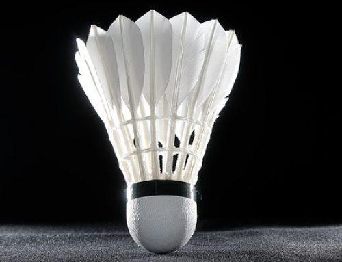 Jahreshauptversammlung 2020der Badminton-Abteilung zum zweiten