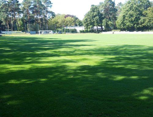 Testspiel am 09.08.2020 gegen den Bonner SC